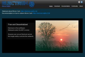 Electrum Home Page (Image: Bitcoin Investors UK)